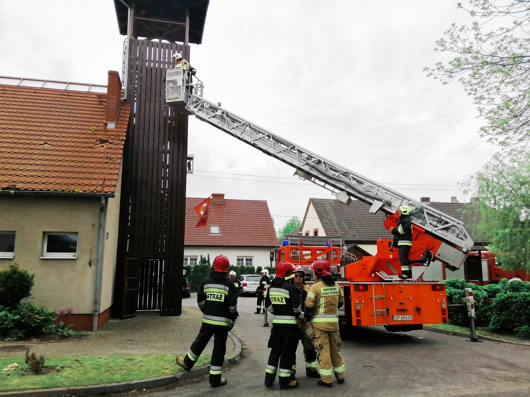 Spadający konar uszkodził dach świetlicy w Starych Siołkowicach